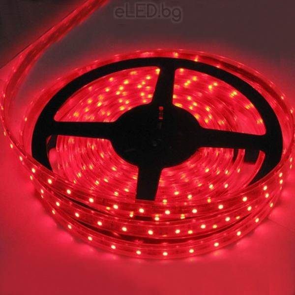 24w red led strip light smd3014 60 led ip20 5m eled 24w red led strip light smd3014 60 led ip20 5m mozeypictures Gallery